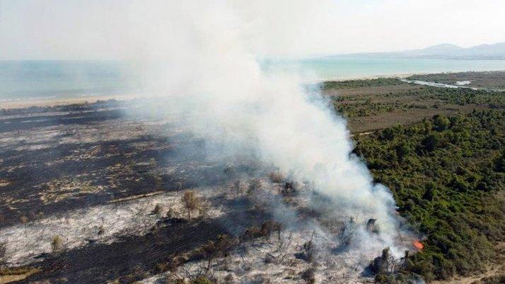 UNESCO Dünya Mirası listesindeki Kızılırmak Deltasında çıkan yangında kundaklama şüphesi