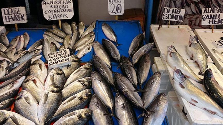 Eylül ayında lezzetli olan balıklar… Hangi balık hangi ayda yenir?