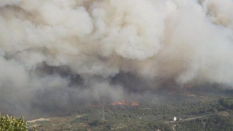 Aydın'da korkutan yangın! Kontrol altına alınamıyor