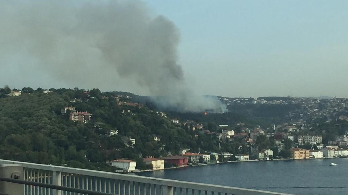 Beykoz'da ormanlık alanda çıkan yangın kontrol altına alındı!