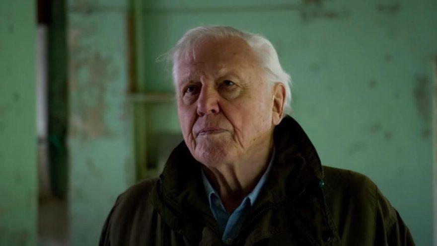 Sir David Attenborough kimdir, mesleği nedir?