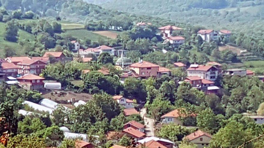 Muhtarın isyanı: Köyde corona olanları ifşa etti
