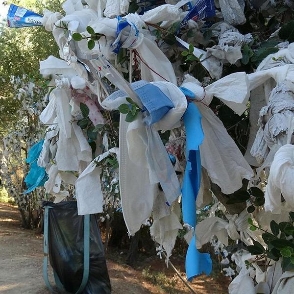 Görenler tepkili: Dilek ağaçlarına maske taktılar