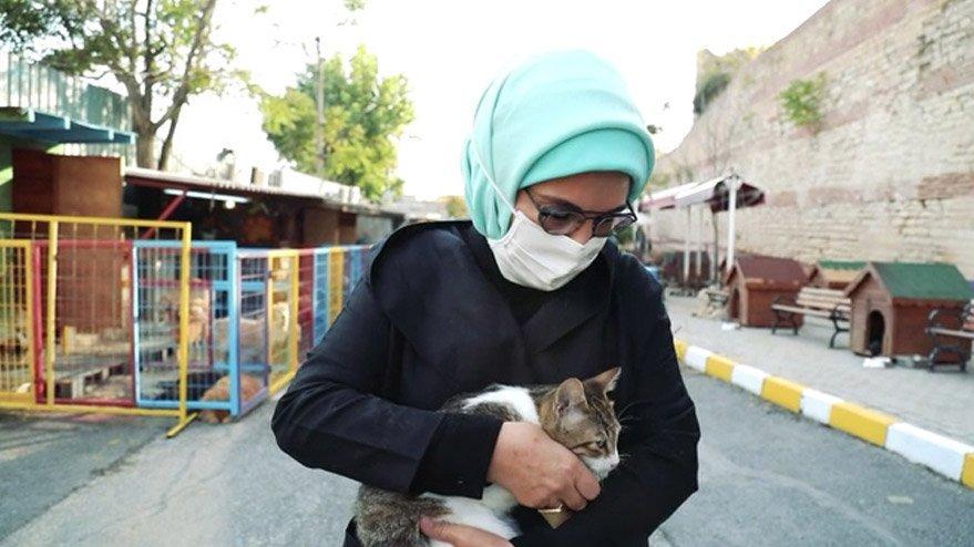 Emine Erdoğan'dan 'hayvan hakları' mesajı: Vicdanları rahatlatacak yasa bir an önce çıkmalı