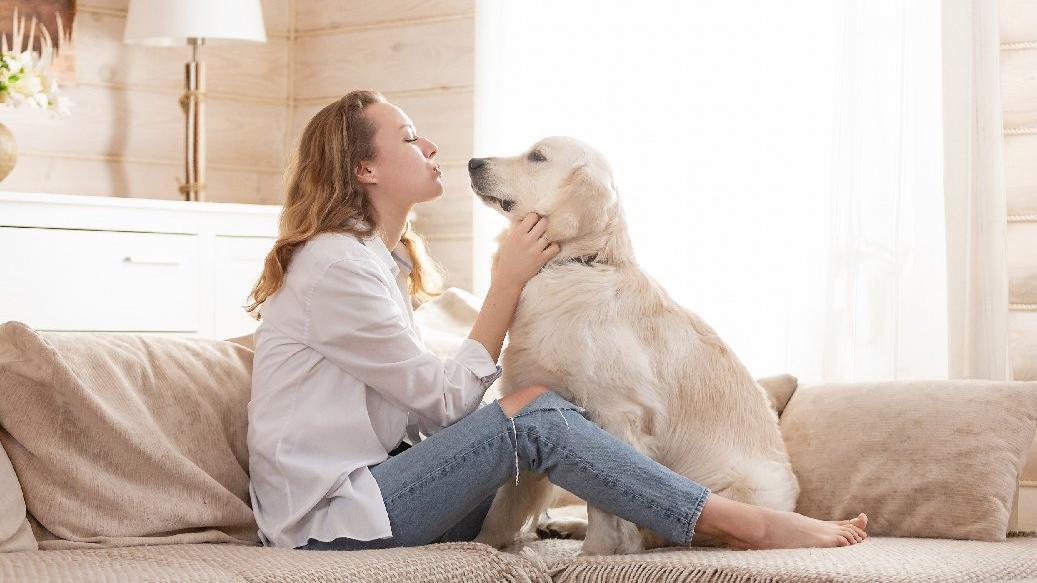 Bugün Hayvanları Koruma Günü! 4 Hayvanları Koruma Günü'nün anlamı nedir?