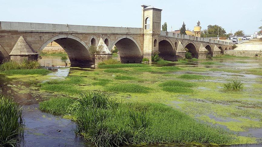 Tunca Nehri'ni ot bastı