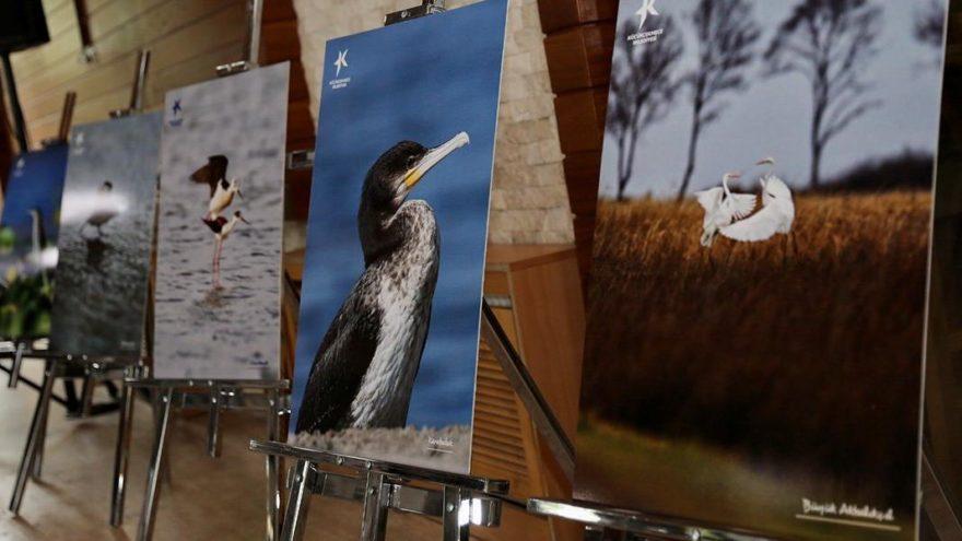 Küçükçekmece Gölü'nde yaşayan 166 kuş türünü tanıtan kitap yayınlandı