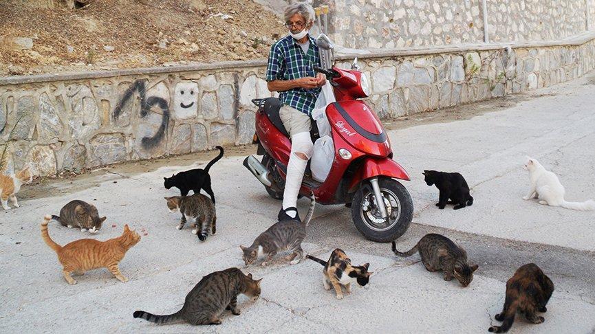 Her gün en az 300 sokak hayvanı besliyor