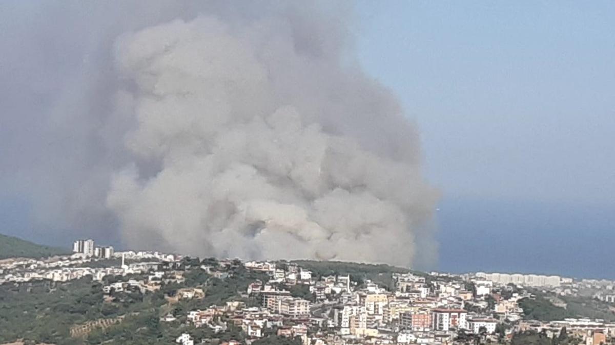 Bakan Pakdemirli: Hatay'daki yangının terörle bağlantısı hakkında kaygı ve şüphelerimiz var