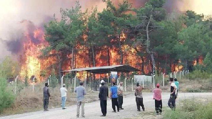 Kahramanmaraş'ta dün çıkan orman yangını kontrol altına alındı