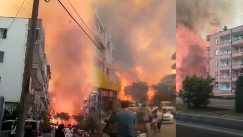 Bakan Pakdemirli: Hatay'daki tüm yangınlar kontrol altına alındı