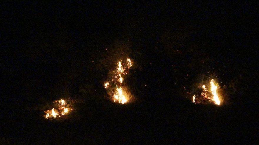 Trabzon'daki örtü yangını söndürüldü