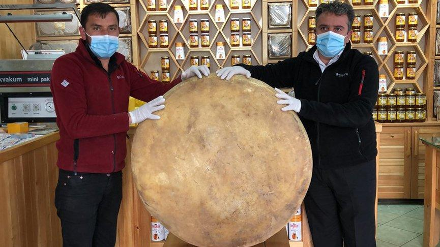 100 kiloluk dev gravyer peyniri