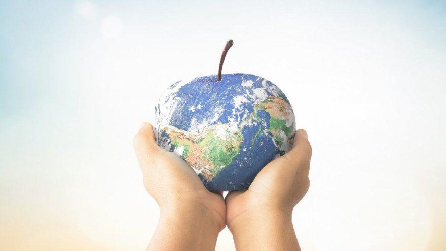 Dünya Gıda Günü nedir, neden kutlanıyor?