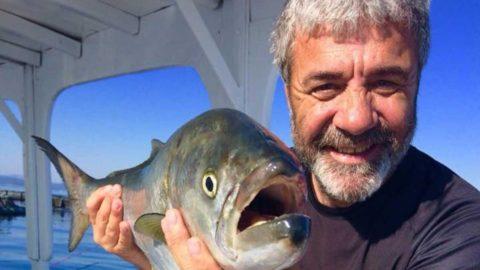 Ekim-kasım döneminin favori balığı palamut
