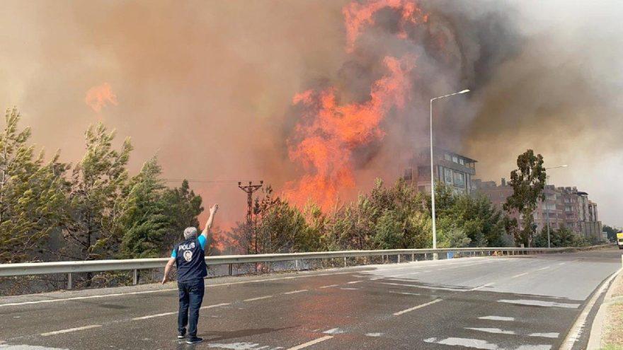 DOSYA: Türkiye'de ormanlar neden yanıyor?