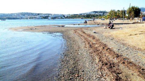 Bodrum'da deniz 15 metre çekildi, adacıklar oluştu