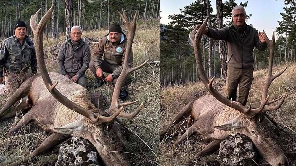 Kızıl geyik avlayan eski başkan: Her şey yasal