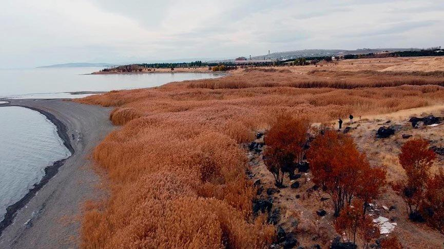 Van Gölü'nde sular çekildi, 2 bin 750 yıllık liman ortaya çıktı