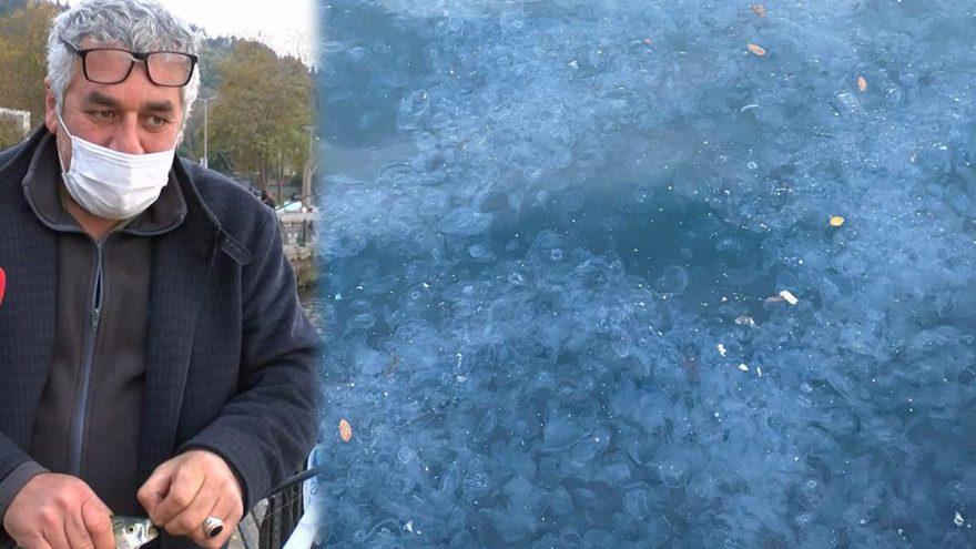 Üsküdar'da binlercesi kıyıya vurdu! Deniz kıyısı beyaza büründü