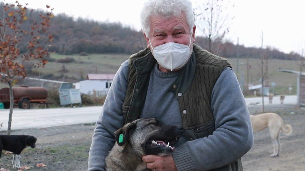 Kendini sokak hayvanlarına adadı, 71 yaşında veterinerlik okudu