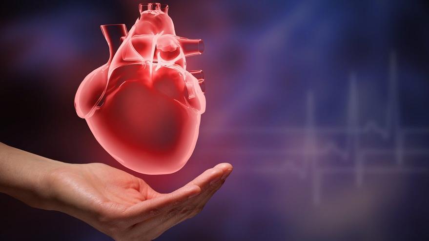 Covid-19'a yakalanan kalp hastaları nelere dikkat etmeli?