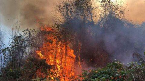 4 ilde, 23 noktada yangın