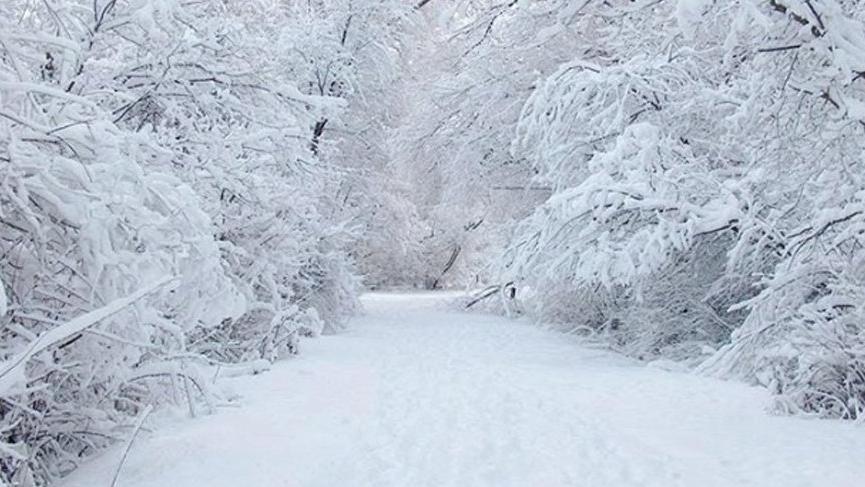 Son dakika... Meteoroloji'den 20 il için kar yağışı uyarısı