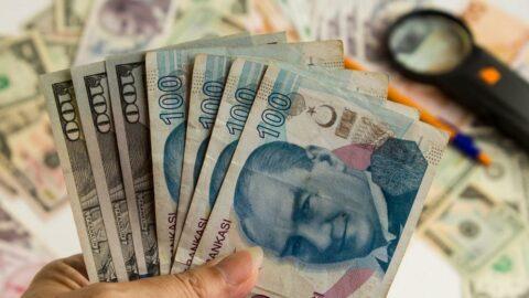 Merkez doların enflasyona etkisini ve ne kadar sıcak para girdiğini açıkladı