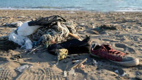 Her iki deniz kaplumbağasından biri plastik yutuyor!