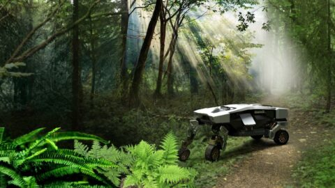 Hyundai'den bir robot daha