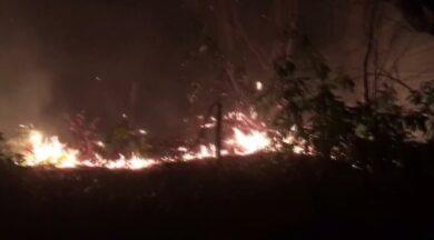 Korkutan orman yangını! Köylüler seferber oldu
