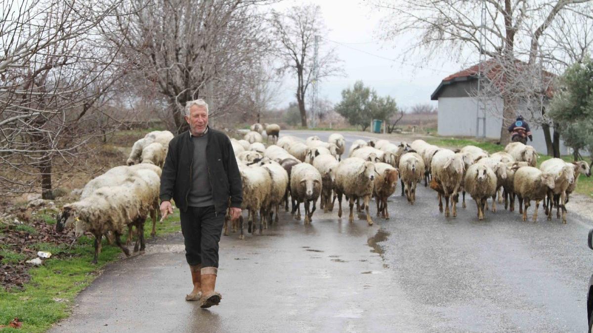 Köylerde tarım ve hayvancılık yaşlılara kaldı
