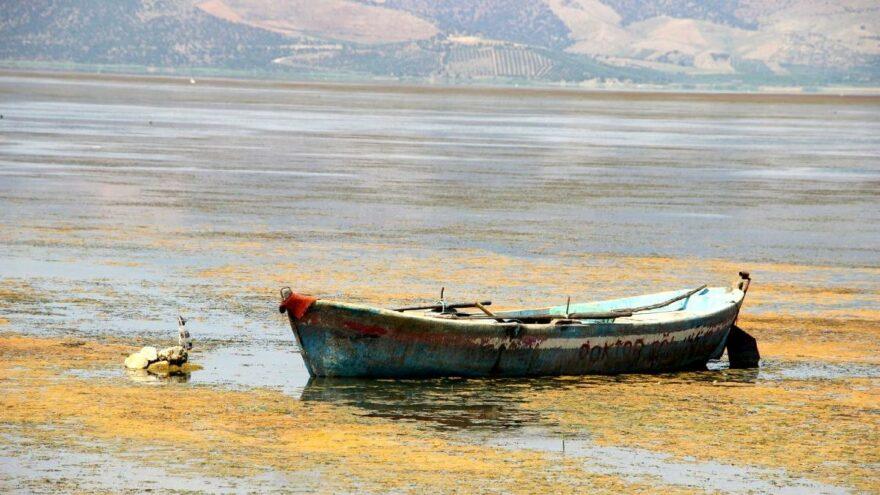 'Kuş cenneti Marmara Gölü yok oluyor'