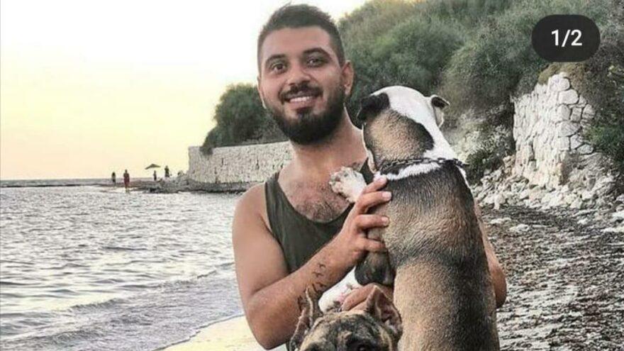 Sokak köpeğine saldıran pitbull sahibine 20 bin lira ceza
