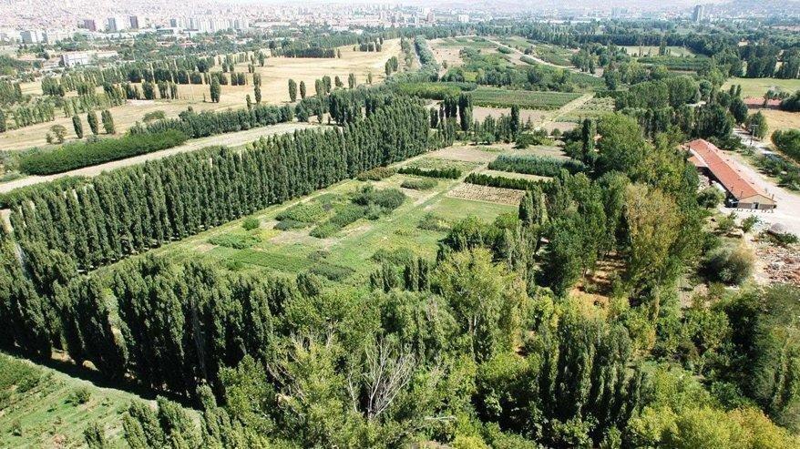 Mansur Yavaş, Atatürk Orman Çiftliği'nde talana izin vermedi