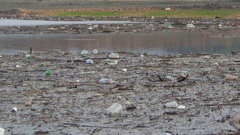 Bayramiç Barajı'nda zehirli atık tehdidi