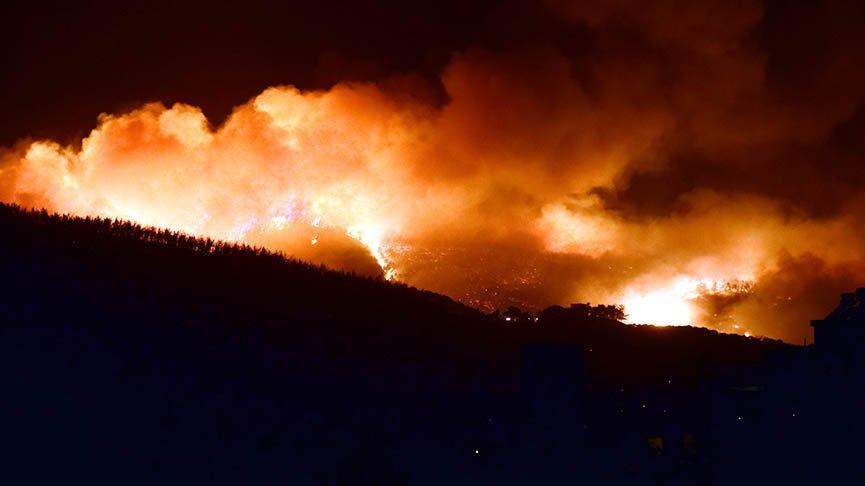 2020'de 3 bin orman yangını çıktı, 20 bin hektar alan kül oldu