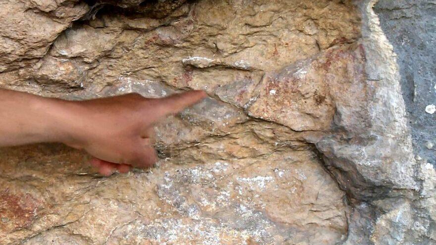 Mersinde 8 bin yıllık kaya resimleri keşfedildi