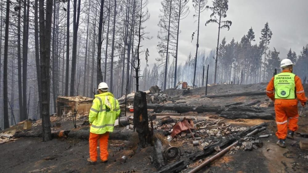 Arjantin'de orman yangınları günlerdir devam ediyor
