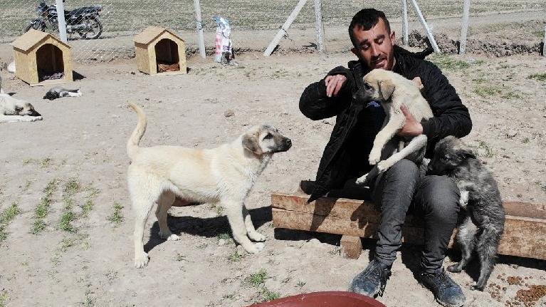 Köpekleriyle köyden kovulan Ramazan engellerini aştı