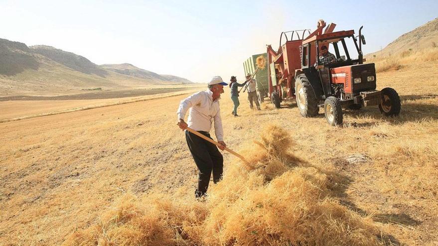 53 bin çiftçi tarlayı terk etti
