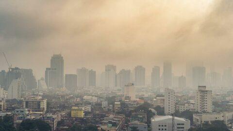 'Hava kirliliğine maruz kalmak organ yetmezliğine kadar götürebilir'