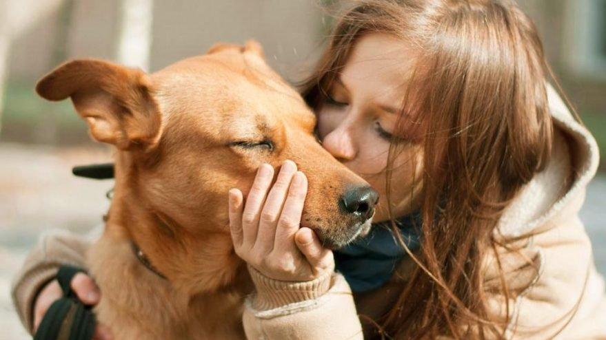 Bilim Kurulu Üyesi: Evcil hayvanlara da bulaşıyor