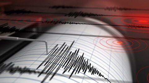 İlçe gece boyunca Ege Denizindeki depremlerle sallandı