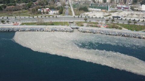 Marmara'nın derinlikleri tehdit altında