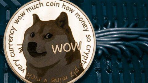 Dogecoin'in toplam piyasa değeri 11 milyar doları aştı