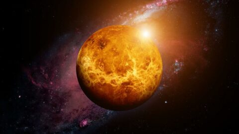 Bilim insanlarından heyecanlandıran çalışma: Venüs'teki gazlar canlı yaşamını gösteriyor