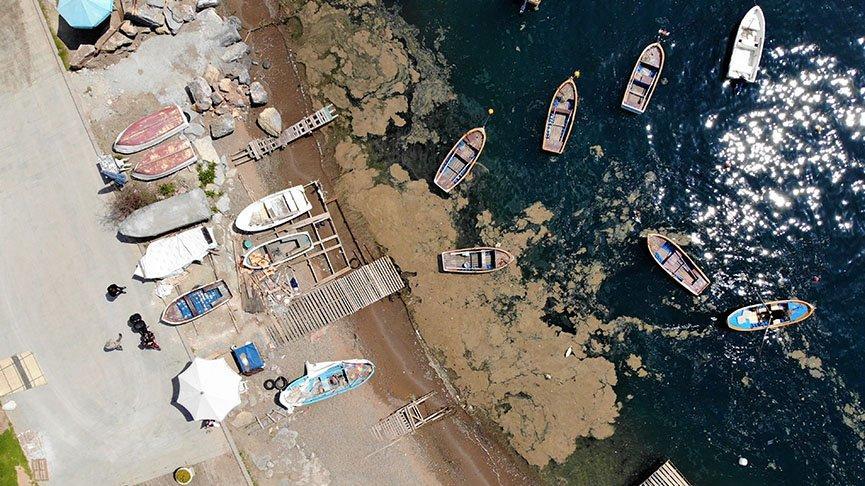 Balıkçılara zor anlar yaşatan tabaka 'doğa olayı' çıktı