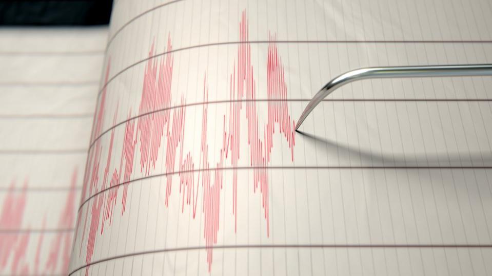 İran'da nükleer santralin yakınında korkutan deprem